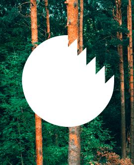 Kuratorium für Waldarbeit und Forsttechnik (KWF) e.V.